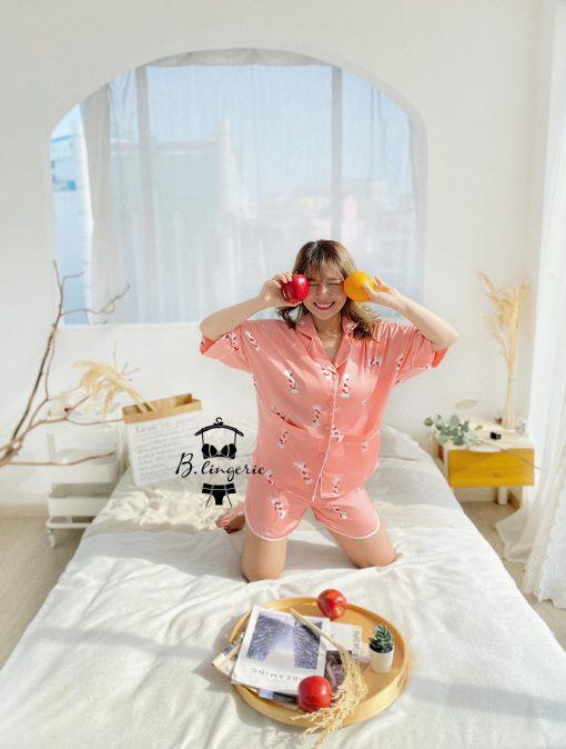 Đồ Pijama Nữ Ngắn Candy - BO956
